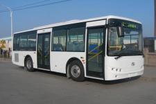 9米|15-31座金龙城市客车(XMQ6900AGD5)