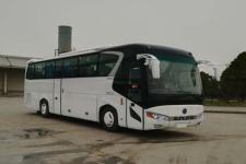11米|24-52座申龍客車(SLK6118GLD5)
