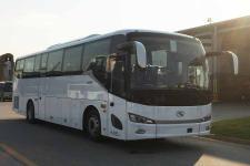 11米|24-52座金龙客车(XMQ6112AYD6D)