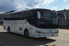 11米|24-48座金龙客车(XMQ6112AYN6C)