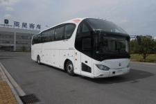 12米|24-54座亚星客车(YBL6125H1QE1)图片