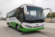 8米|24-36座紫象纯电动客车(HQK6803ASBEVU1)