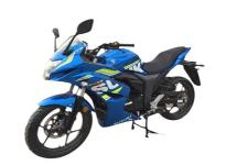 铃木牌GSX150F型两轮摩托车图片