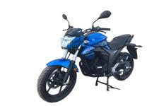 铃木牌GSX150N型两轮摩托车图片