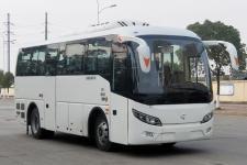 8.3米|24-36座飞燕纯电动城市客车(SDL6839EVG)
