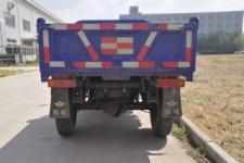 五征牌7YP-1750D8型自卸三轮汽车图片