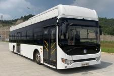 远程牌DNC6120FCEVG1型燃料电池低入口城市客车图片