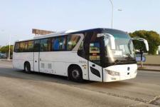 11米|24-50座申龙纯电动客车(SLK6118ABEVL9)