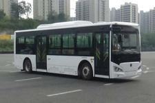 10.5米|21-37座紫象纯电动城市客车(HQK6109UGBEVL1)