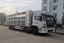 国六东风天龙前四后八畜禽运输车13329882498