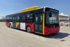 12米|20-46座中国中车纯电动低入口城市客车(TEG6129BEV17)