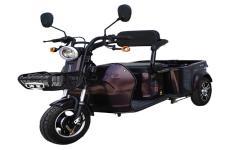 海宝牌HB500DQZ型电动正三轮轻便摩托车图片