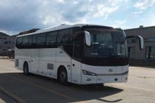 11米金龙XMQ6112AYN6T客车图片