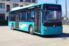 10.5米|20-39座中国中车纯电动城市客车(TEG6105BEV21)
