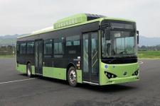 12米比亚迪BYD6122B2EV2纯电动低入口城市客车图片