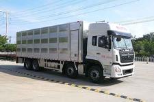 智能化东风天龙前四后八畜禽运输车价格在哪买13329882498