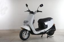 绿源牌LY1200DT-19B型电动两轮摩托车图片