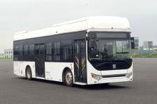 远程牌DNC6100FCEVG3型燃料电池低入口城市客车图片