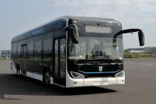 远程牌DNC6121BEVG12型纯电动低入口城市客车图片