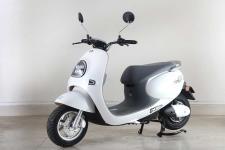 绿源牌LY1500DT-9型电动两轮摩托车图片