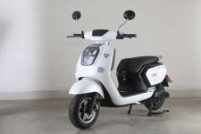 绿源牌LY1500DT-16型电动两轮摩托车图片