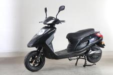 绿源牌LY800DQT-6型电动两轮轻便摩托车图片