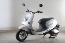 绿源牌LY800DQT-4型电动两轮轻便摩托车图片