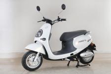 绿源牌LY800DQT-3A型电动两轮轻便摩托车图片