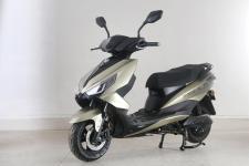 绿源牌LY1000DQT-9B型电动两轮轻便摩托车图片