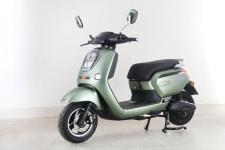 绿源牌LY1000DQT-C型电动两轮轻便摩托车图片