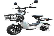 台铃牌TL600DQT-54B型电动两轮轻便摩托车图片