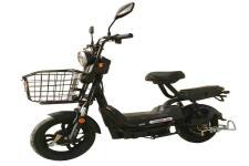 台铃牌TL500DQT-61B型电动两轮轻便摩托车图片