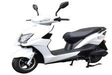 台铃牌TL800DQT-70E型电动两轮轻便摩托车图片