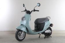 绿源牌LY1200DT-6A型电动两轮摩托车图片