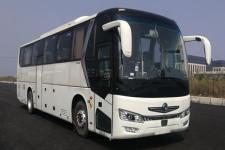 东风牌DFA6118LBEV型纯电动客车图片