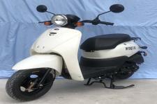 王野牌WY50QT-26E型两轮轻便摩托车图片