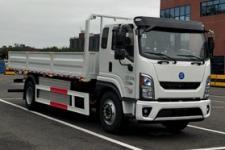 德帅单桥纯电动货车252马力9655吨(DLP1181BEVT71)