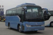8米金旅客车