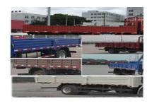 豪沃牌ZZ1167G451DE1型載貨汽車圖片