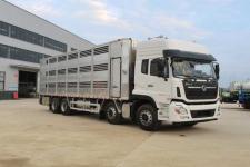国六东风天龙前四后八畜禽运输车多少钱一辆