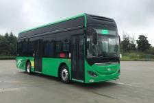 海格牌KLQ6106GAFCEV3型燃料电池低入口城市客车图片