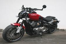 雷卡迪牌LKD250-3型两轮摩托车图片