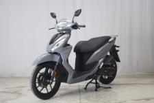 大阳牌DY150T-32A型两轮摩托车图片