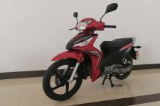 豪进牌HJ110-16型两轮摩托车图片