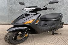 立雅牌LY125T-2D型两轮摩托车图片