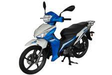 钱江牌QJ110-11G型两轮摩托车图片