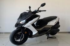 常光牌CK300T-13型两轮摩托车图片