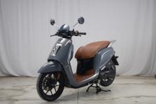 大阳牌DY125T-31型两轮摩托车图片