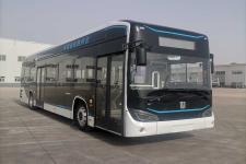 远程牌DNC6121BEVG11型纯电动低入口城市客车