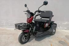 大安·盛世牌DAS500DQZ型电动正三轮轻便摩托车图片